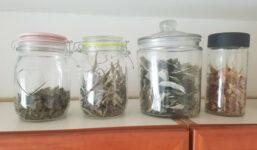 Víte, že sklenice uklidí, zorganizují i zkrášlí vaši kuchyni?