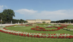 Jak si užít Vídeň? Prokličkujte ji na kole!
