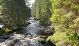 Pohádkový výlet kolem řeky Vydry