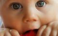 Výživa kojenců a batolat