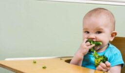 """Co znamená """"jídlo do tlapky"""" neboli metoda BLW"""